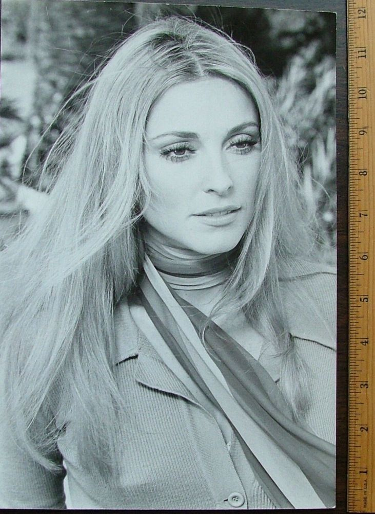 """Sharon Tate glossy 8 x 12 silver gelatin double weight publicity photo for """"13"""" also known as """"12+1"""""""