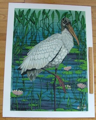 Woodstork, an original copper plate engraving from the collection of twenty Birds of Florida....